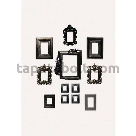 Accessories DM226-1