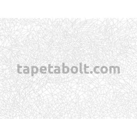 Shades P232101-8